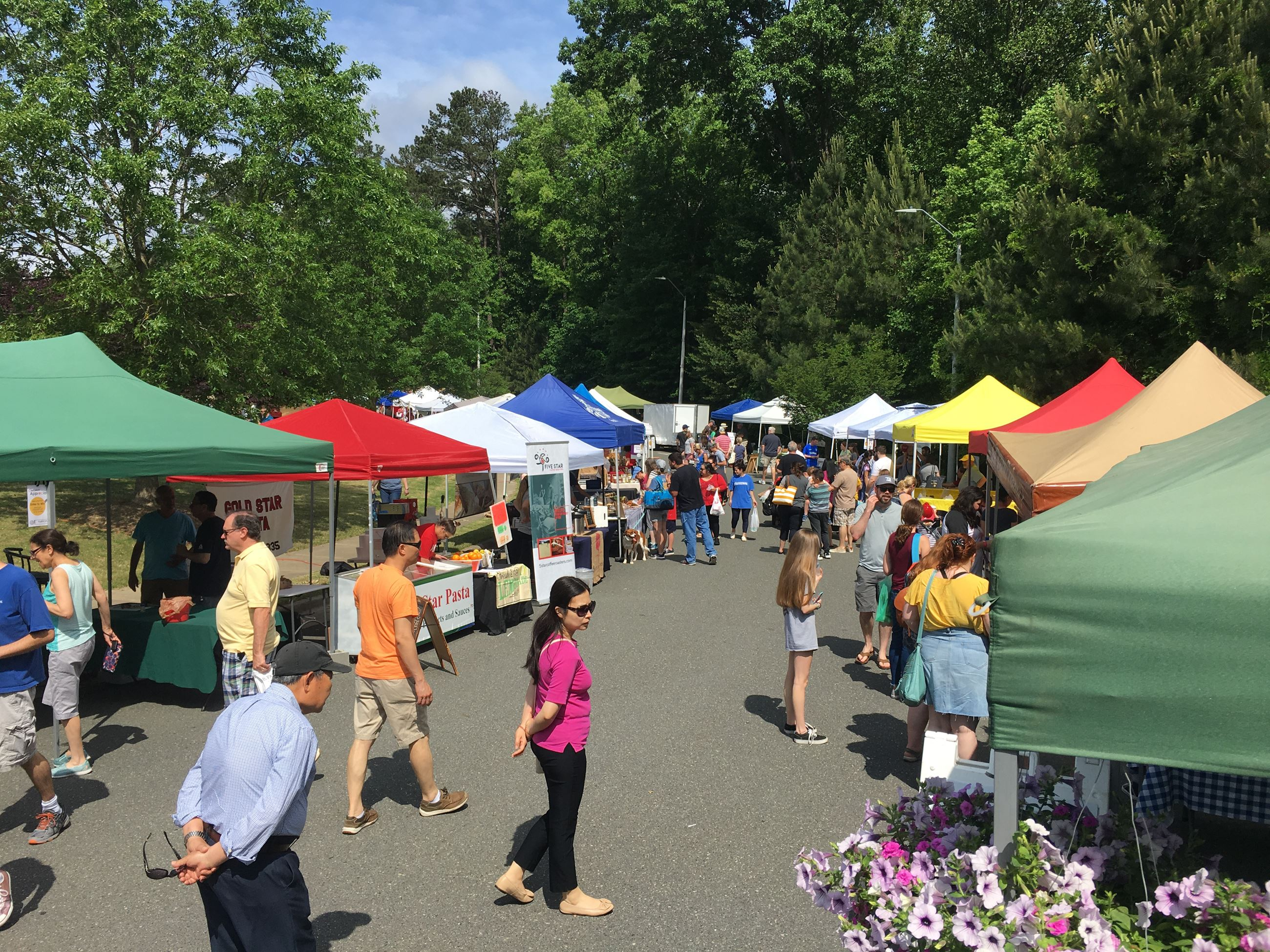 Holly Springs Farmers Market scene